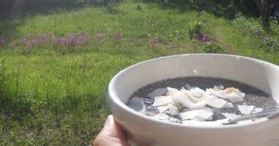 Chiapudding med kokos